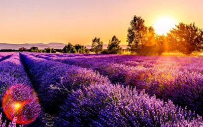 Vivre à Aix-en-Provence